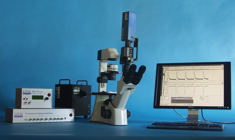 肌肉細胞收縮與鈣離子量測系統