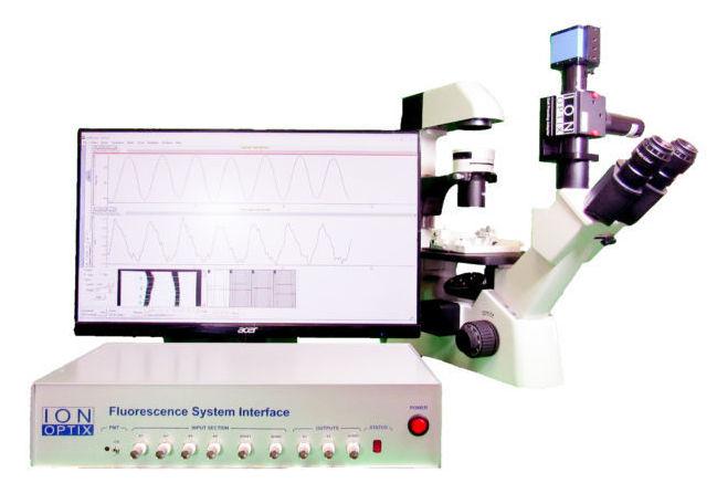 血管鈣離子、直徑與流量測量系統